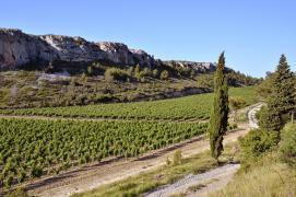 La montagne d alaric carcassonne et lagrasse